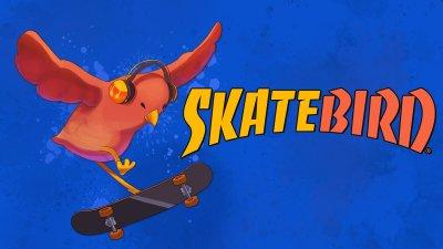بررسی بازی SkateBIRD